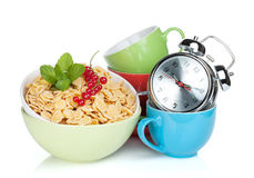 Fresh corn flakes with currant Royalty Free Stock Image