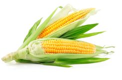Fresh corn fruits with green leaves Royalty Free Stock Images