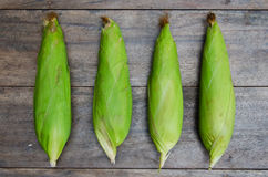 Fresh Corn In The Green Cob. Fresh corn with green cob covered on the wood table Royalty Free Stock Photos