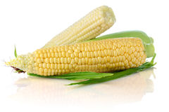 Fresh corn with green leaf Royalty Free Stock Image