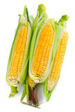 Fresh corn with green leaf Royalty Free Stock Images