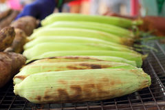 Fresh corn on the grill Stock Images