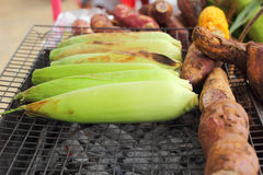 Fresh corn on the grill Royalty Free Stock Image