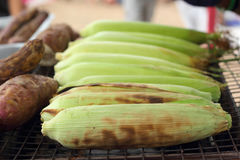 Fresh corn on the grill Royalty Free Stock Photography