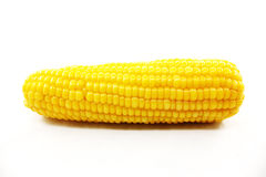 Fresh corn Royalty Free Stock Image