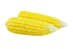 Fresh corn Stock Photo