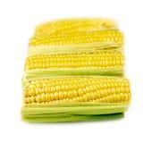 Fresh corn isolated on white Royalty Free Stock Images