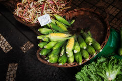 Fresh corn. With leaves, farmers market in Madeira Royalty Free Stock Images