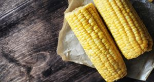 Fresh corn. Natural food from corn cob with salt. Rural Mexican. Food. Healthy food. Boiled and fried corn cobs on wooden table are served with salt.r Royalty Free Stock Image