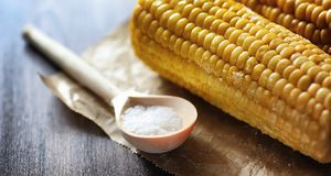 Fresh corn. Natural food from corn cob with salt. Rural Mexican. Food. Healthy food. Boiled and fried corn cobs on wooden table are served with salt.r Stock Photos