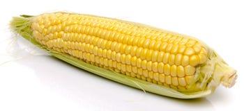 Free Fresh Corn On The Cob Royalty Free Stock Photos - 43187278