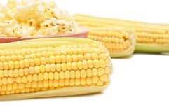 Fresh corn and popcorn Stock Images