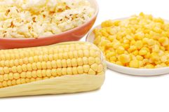 Fresh corn, preserved corn and popcorn Royalty Free Stock Image
