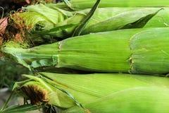 Fresh Corn Produce Stock Photos