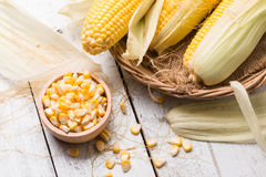 Fresh corn on rustic wooden table, closeup. Ear of corn royalty free stock photography