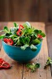 Fresh Corn Salad. Studio Shot of fresh green Corn Salad with sweet pepper paprika rings stock photos