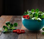 Fresh Corn Salad. Studio Shot of fresh green Corn Salad with sweet pepper paprika rings royalty free stock photography