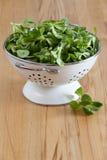Fresh corn salad in a white enamel colander Stock Photos