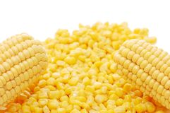 Fresh corn and tinned corn Royalty Free Stock Photo