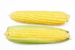 Fresh corn vegetable Royalty Free Stock Image