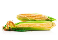 Fresh corn vegetable Stock Photo
