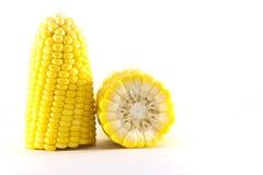 Fresh corn on white background. isolated Royalty Free Stock Photos
