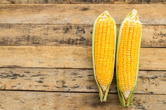 Fresh corn on wooden table background Stock Photos