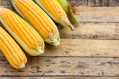 Fresh corn on wooden table background Stock Image