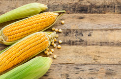 Fresh corn on wooden table background Royalty Free Stock Photos