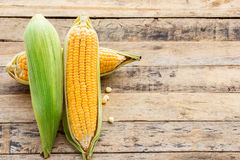 Fresh corn on wooden table background Royalty Free Stock Images