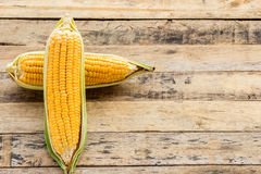 Fresh corn on wooden table background Royalty Free Stock Photography