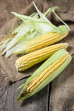 Fresh corn on wooden table. Fresh raw corn on wooden table Royalty Free Stock Photo