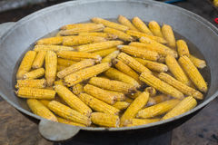 Fresh corncobs cooked in metal bowl Royalty Free Stock Photography