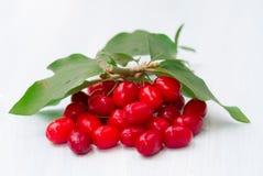 Fresh cornel berries Stock Photo