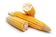 Fresh corns Royalty Free Stock Photography