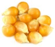 Fresh Corns Stock Image