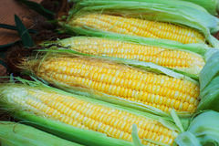 Fresh corns. Close-up background Royalty Free Stock Images