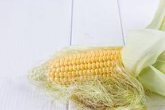 Fresh corns on white background. Fresh corns on the wooden white background Royalty Free Stock Image
