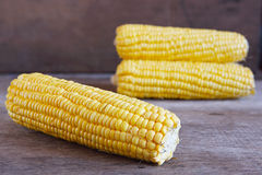 Fresh Corns on Wooden for Background Uses. Stock Photo