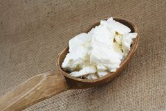 Fresh cottage cheese Royalty Free Stock Photo