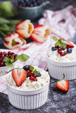 Fresh cottage cheese and berries Stock Images
