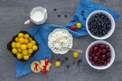 Fresh cottage cheese with berries, milk and biscuit Stock Photography