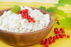 Fresh cottage cheese with berries Royalty Free Stock Photos
