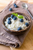 Fresh cottage cheese and blueberries. Farmers cheese, cottage cheese or quark - healthy homemade dairy product for breakfast. Topped with blueberries and mint Royalty Free Stock Photo