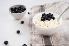 Fresh cottage cheese with blueberries royalty free stock images