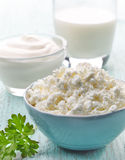 Fresh cottage cheese and dairy products Stock Photos