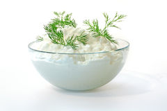 Fresh cottage cheese and fennel Royalty Free Stock Photography