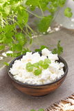 Fresh cottage cheese Stock Photo