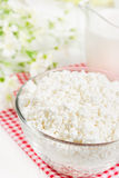 Fresh cottage cheese and jug with milk Stock Photos