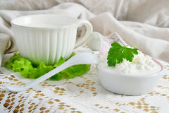 Fresh cottage cheese and milk Royalty Free Stock Photography